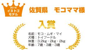 佐賀県モコママ様
