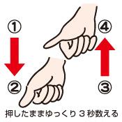 指圧/ペットマッサージの基本