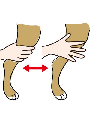 ペットマッサージ 犬の首