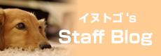 イヌトゴ's staff blog