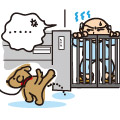 愛犬のしつけと飼い主のマナー