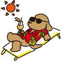 犬の散歩 日光浴/イラスト