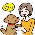 飼い主さんとのコミュニケーション/イラスト