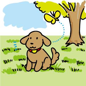 芝生の上でお座り