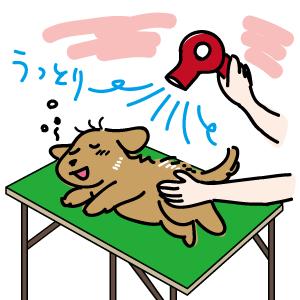 犬のしつけ/役目