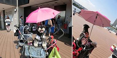 エアーバギー用日傘