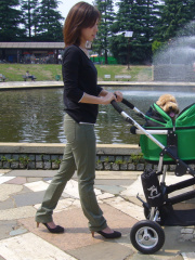 Air Buggy for Dog/滑らかな走行性