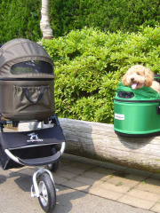 Airbuggy for Dog 3パターンに活用